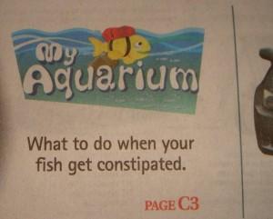 poisson constipé